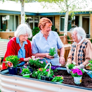 Mountain View Aged Care Plus Centre